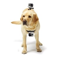 GoPro Dog Harness - Chest & Back Attachment