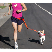 Handsfree Dog leash for Walking & Running Pet Puppy Dog Lead Strong Watste Strap