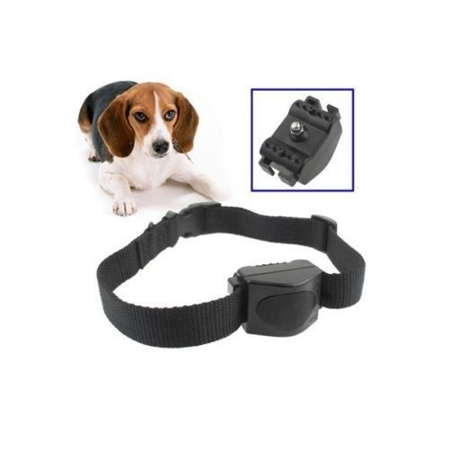 VIBRATION Anti Bark Collar