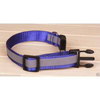 Reflective Dog Collar & Leash set