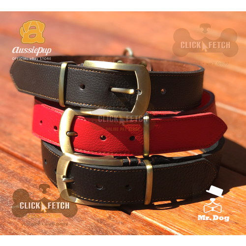 Genuine Leather Collars with Brass Buckle and D-Ring