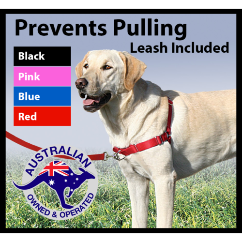 Front tether dog harness - stops dogs pulling