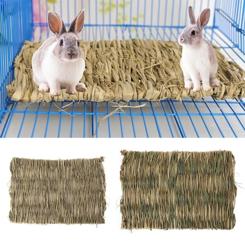 Grass Pet Mat for Reptiles, Rabbits, Ginuea Pigs etc.